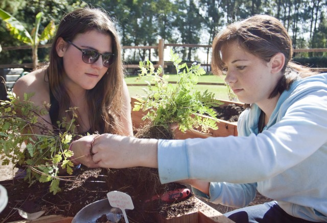 Aviva Kraus, a fourth-year comparative literature and French student, and Brooke Pickett, a fourth-year environmental science student, separate plants in Sunset Canyon Recreation Center during their urban agriculture class, which includes garden maintenance as part of its curriculum.