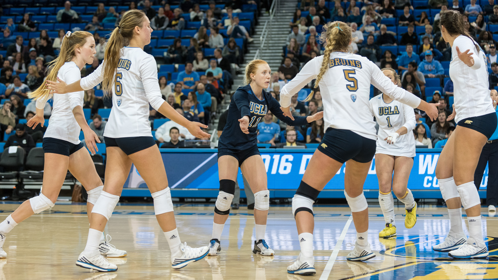 Ucla Volleyball Makes Top Eight To See Many Lineup Changes Next Season Daily Bruin