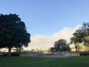 A fire burned in the Bel-Air area near the UCLA campus Wednesday and Thursday. (Kristie-Valerie Hoang/Assistant Photo editor)