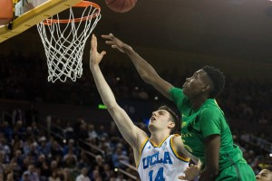 Last season, UCLA and Oregon split their two meetings, with the home team winning both games. The Ducks however, would eventually reach the Final Four while the Bruins exited in the Sweet 16. (Daily Bruin file photo)