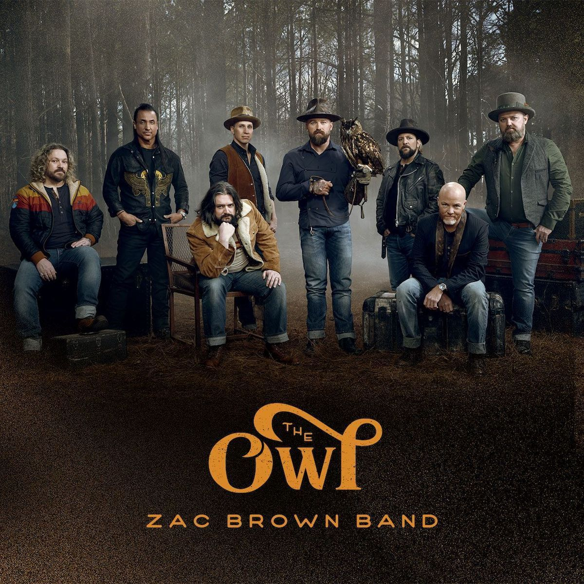Album Review Zac Brown Band S The Owl Achieves Country Pop Fusion Stays True To Roots Daily Bruin