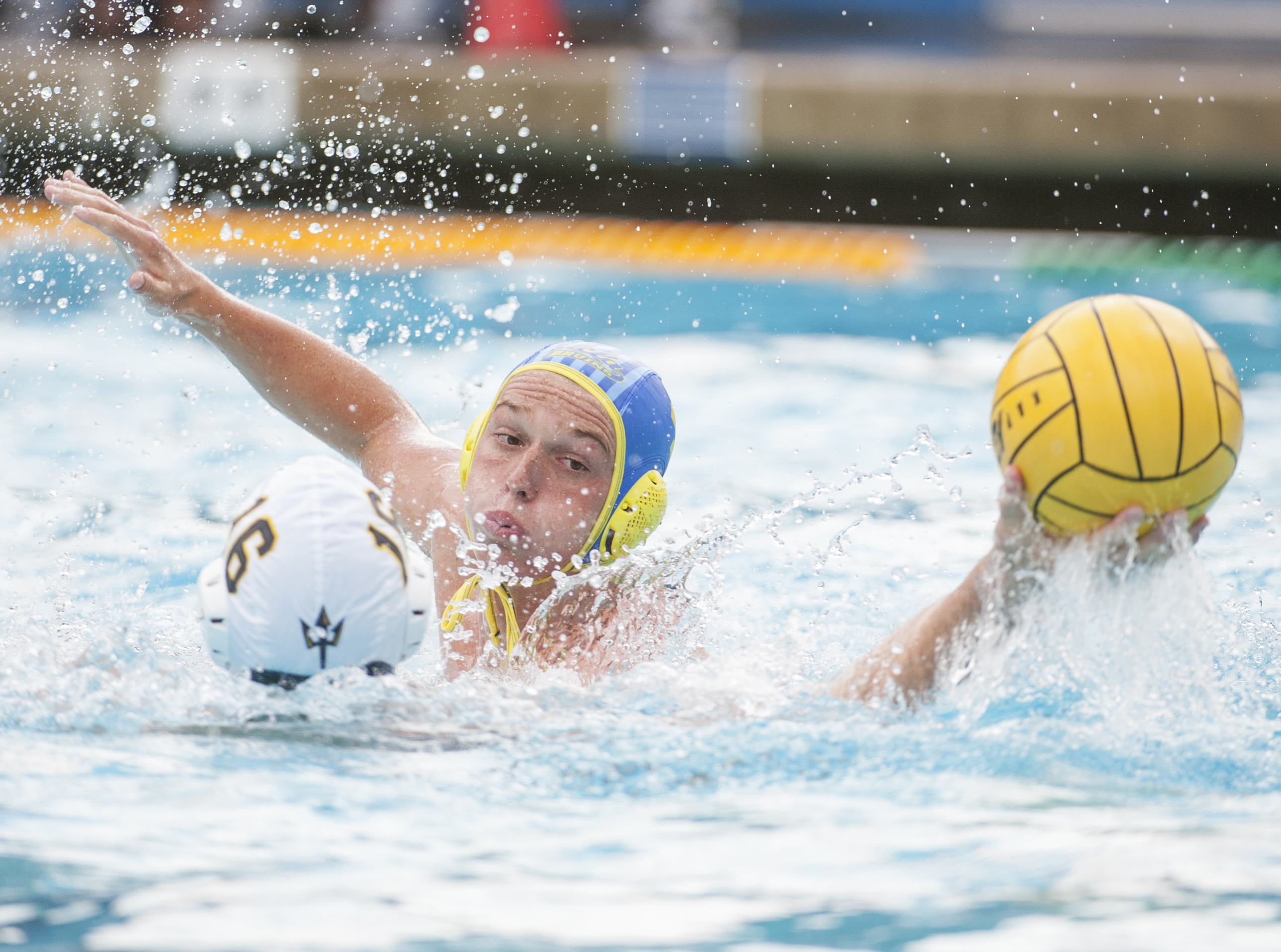 Sophomore attacker Paul Reynolds and the UCLA men's water polo team posted two wins over ranked opponents UCSB and UCSD this weekend.